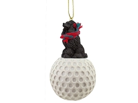 Poodle Chocolate golf Ornament