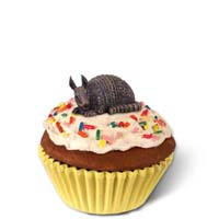 Armadillo Cupcake Trinket Box
