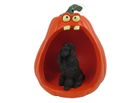 Poodle Black Halloween Statue Figurine and Spooky Pumpkin