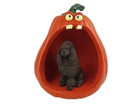 Poodle Chocolate Halloween Statue Figurine and Spooky Pumpkin