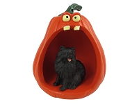Pomeranian Black Halloween Statue Figurine and Spooky Pumpkin