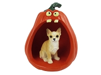 Chihuahua Tan & White Halloween Statue Figurine and Spooky Pumpkin