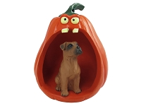 Boxer Tawny w/Uncropped Ears Halloween Statue Figurine and Spooky Pumpkin