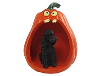 Poodle Black w/Sport Cut Halloween Statue Figurine and Spooky Pumpkin