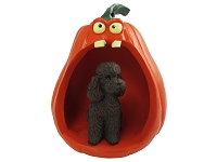 Poodle Chocolate w/Sport Cut Halloween Statue Figurine and Spooky Pumpkin