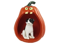Jack Russell Terrier Black & White w/Smooth Coat Halloween Figurine Pumpkin