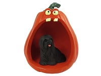 Lhasa Apso Black Halloween Statue Figurine and Spooky Pumpkin
