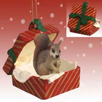 Squirrel Red Gift Box Red Ornament