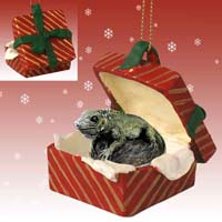 Iguana Gift Box Red Ornament
