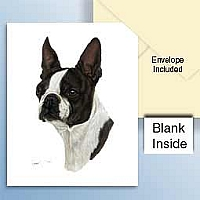 Boston Terrier Greeting Cards Set of 6 *Enevelope NOT included!*