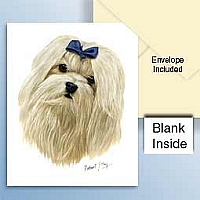 Maltese Greeting Cards Set of 6 *Enevelope NOT included!*