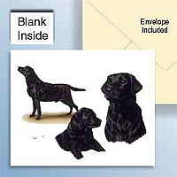 Labrador Retriever Black Greeting Cards Set of 6 *Enevelope NOT included!*