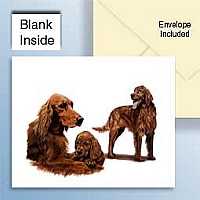 Irish Setter Greeting Cards Set of 6 *Enevelope NOT included!*