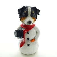 Australian Shepherd Tricolor  Jolly Holidog