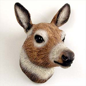Deer Doe Magnet