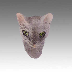 Blue Cornish Rex Tiny One head