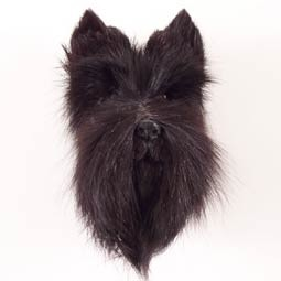 Scottish Terrier Fur Magnet