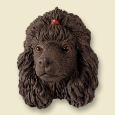 Poodle Chocolate Doogie Head