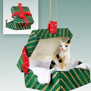 Tortoise & White Cornish Rex Gift Box Green Ornament