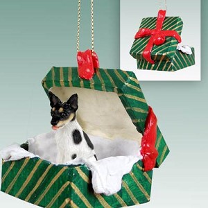 Rat Terrier Gift Box Green Ornament