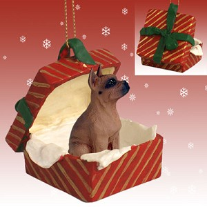 Boxer Tawny Gift Box Red Ornament