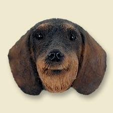 Wire Haired Dachshund Red Doogie Head