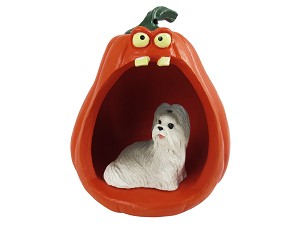 Shih Tzu Gray Halloween Statue Figurine and Spooky Pumpkin
